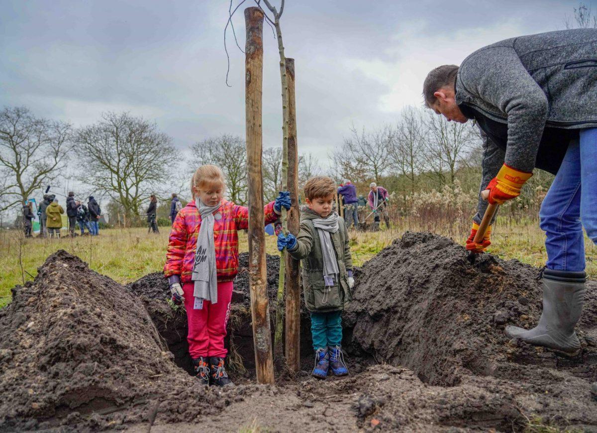 Bomenuitdeelactie voor groenere en gezondere provincie Utrecht