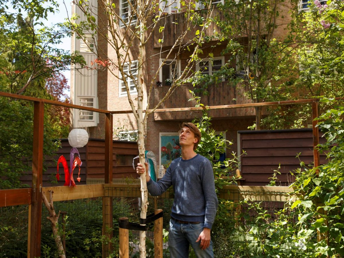 Amsterdammers planten bomen