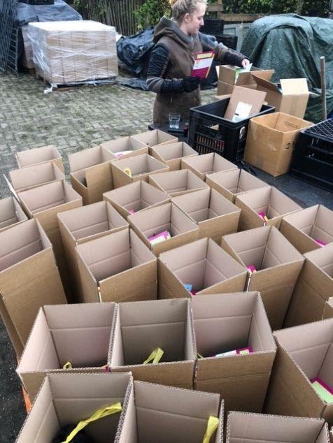 Energiewacht doet ruim 1.000 bomen cadeau