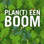 Bomen voor Rotterdam plan van aanpak