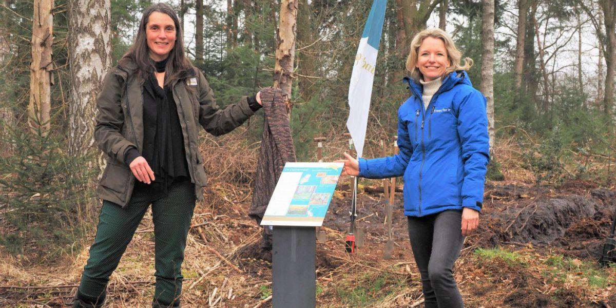 Bijdrage Trees for All helpt om projecten te realiseren