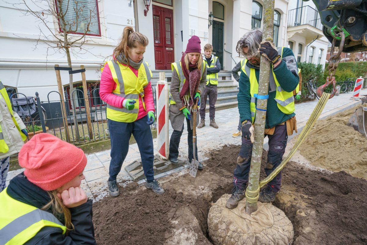 BuurtGroenBedrijf zorgt met het planten van bomen voor vergroening én verbinding