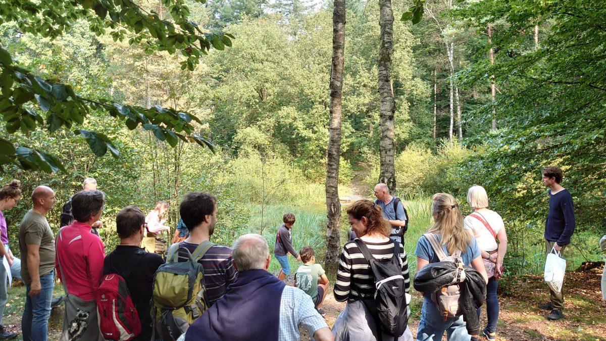 Deelnemers Bomenfestival leerden zaailingen vinden